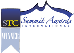 Winner International Summit Award